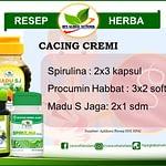 Jual Resep Herba  Cacingan HNI HPAI di Bandung, WA: 082216902775